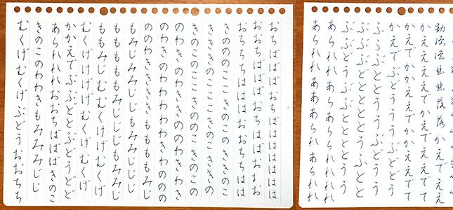 ファイル 471-1.jpg