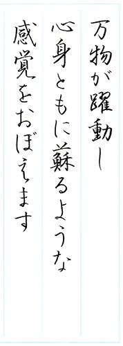 ファイル 572-2.jpg